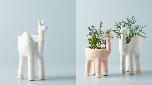 This whimsical pot might actually help you keep your plants alive.