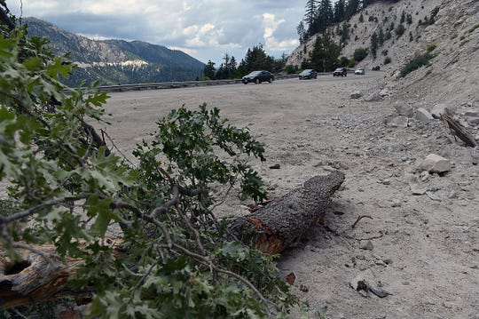 Part of a tree broken lies along State Route 18 after a rockslide blocked the road in the Southern California community of Snow Valley, enroute to Big Bear Lake on Saturday, July 5, 2014, following a widely felt small earthquake.