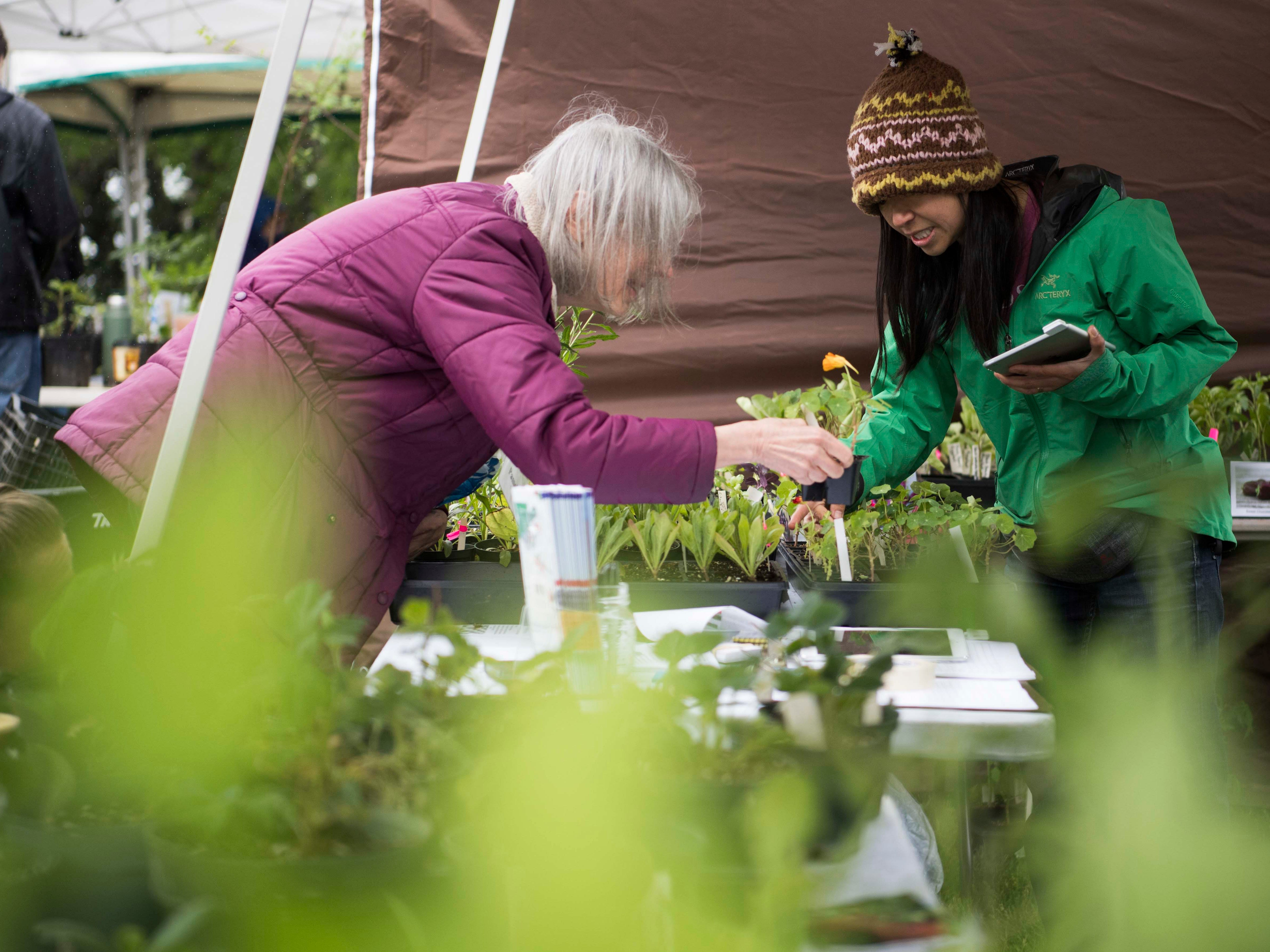 At left Pamela Dritt, of Concord, Mass. speaks to Khann Chov of Knoxville, about plants at Earthfest 2019 at the Knoxville Botanical Gardens in East Knoxville, Saturday, April 20, 2019.