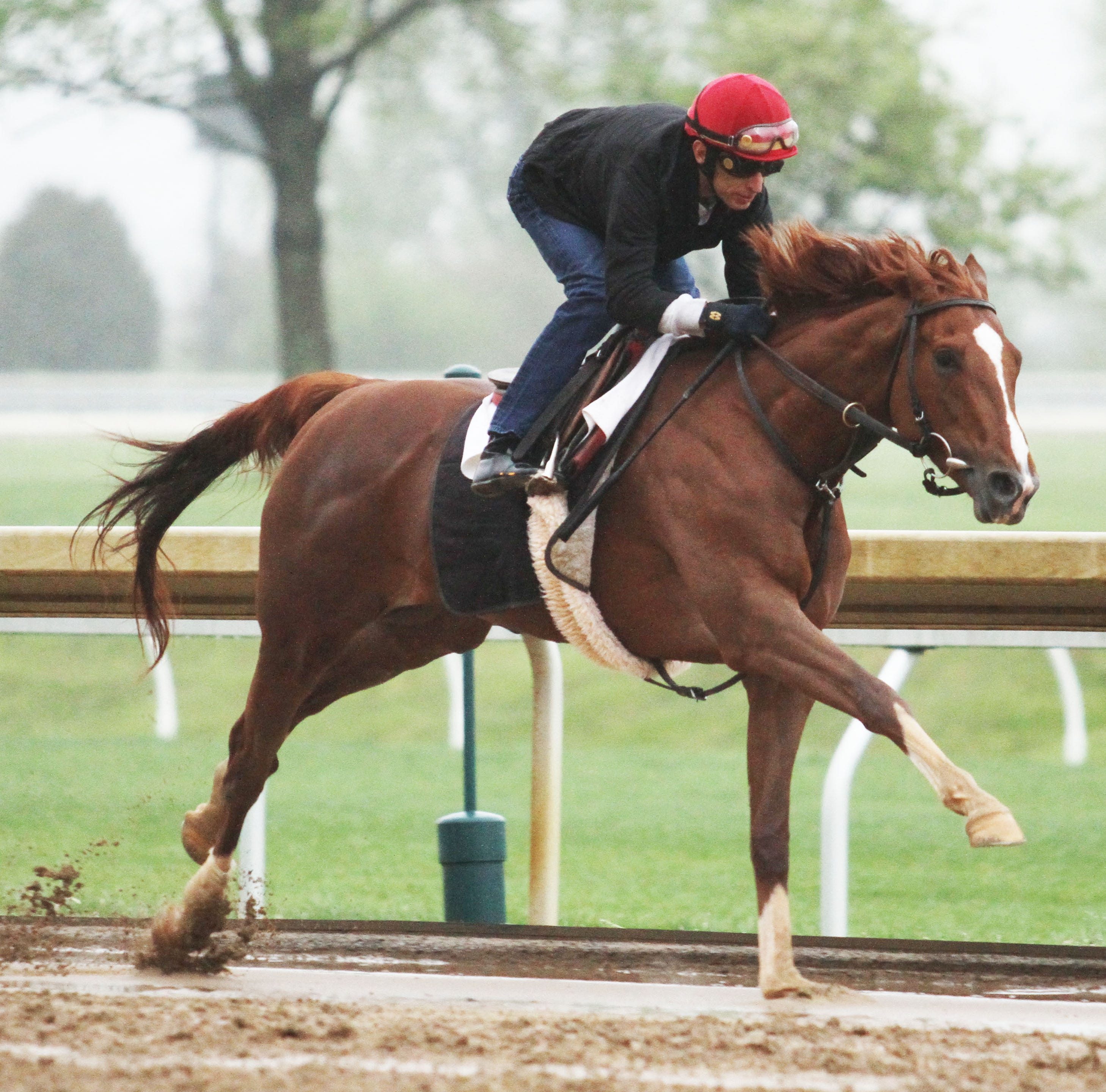 With 2 weeks until the Kentucky Derby, several contenders run next-to-last workouts