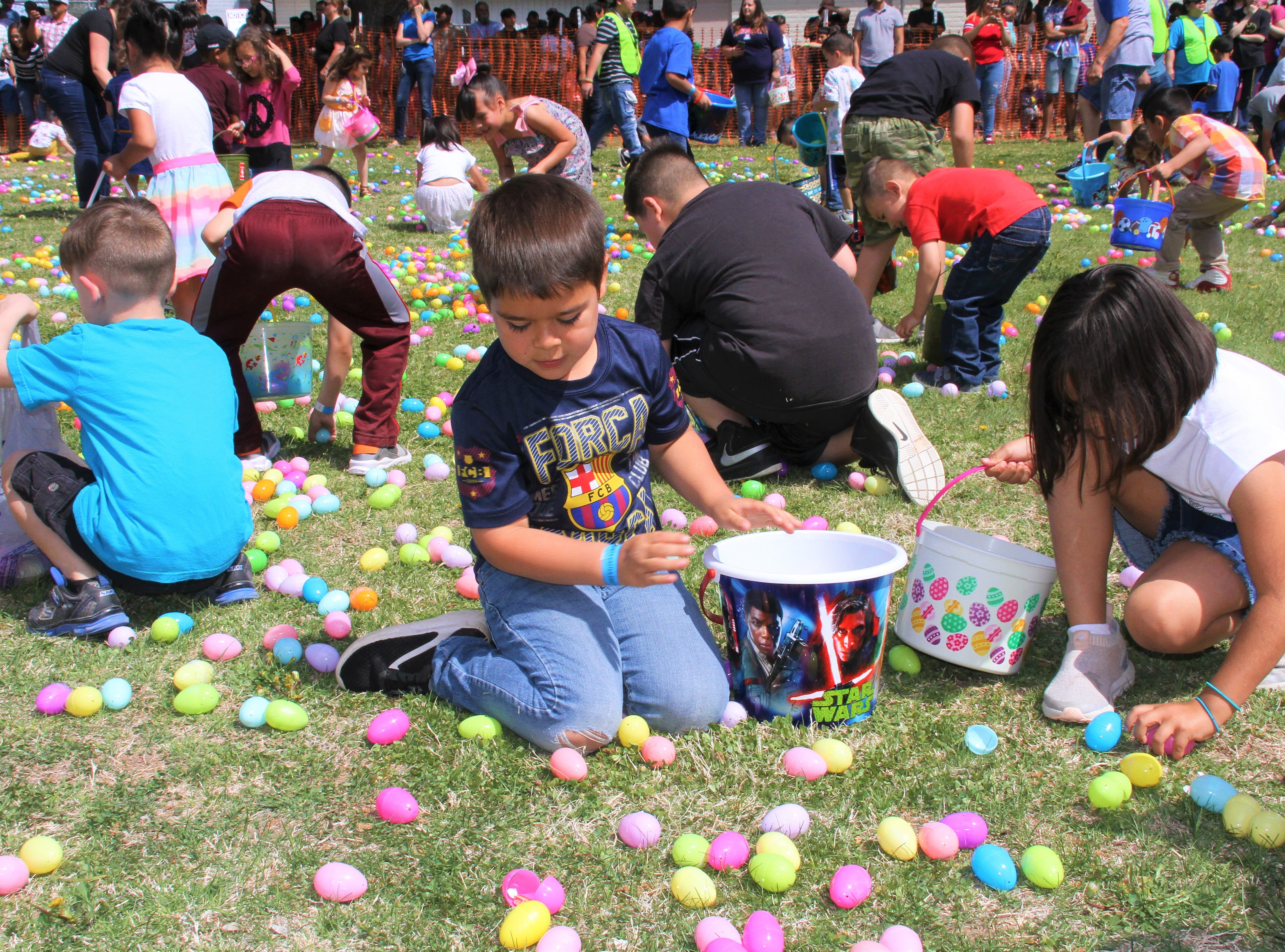 Age group 4 to 6 hunting eggs.