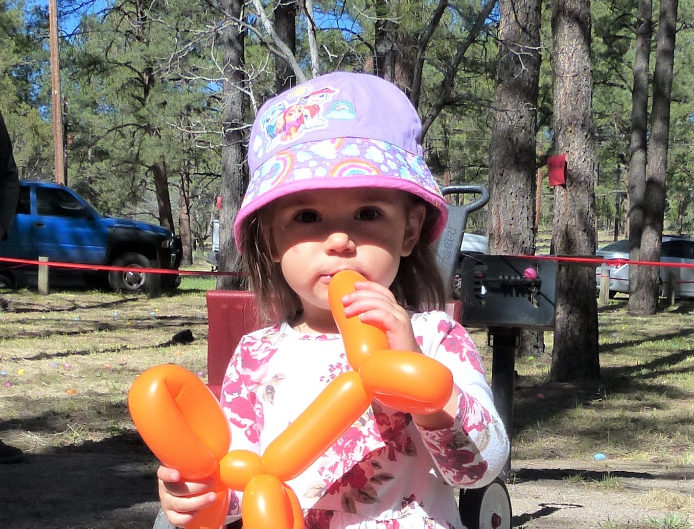 She's checking out if a balloon animal taste as good as it looks.
