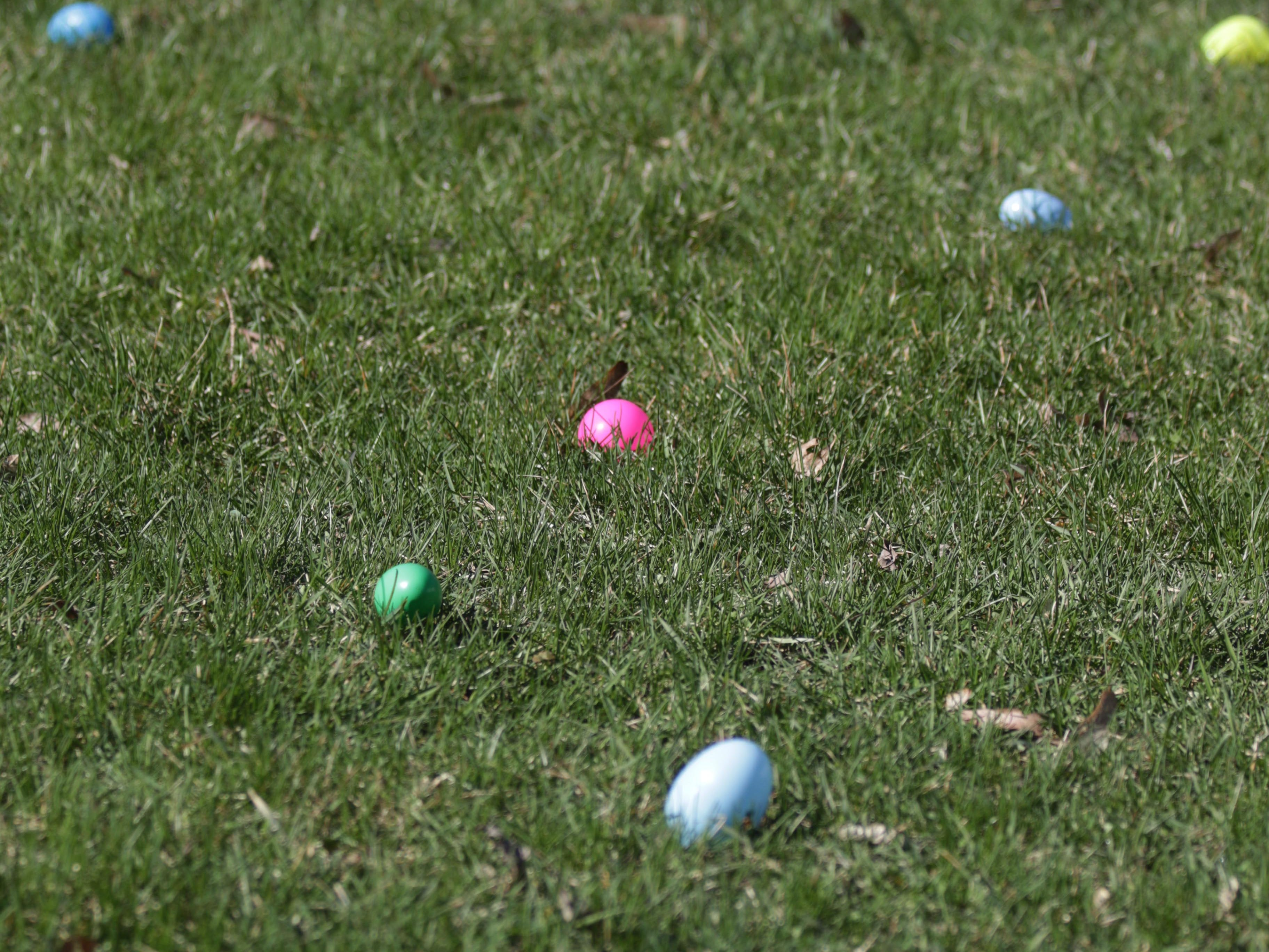 Easter eggs filled with treats are scattered on the lawn of Dan and Kahty Hocevar's lawn, Saturday, April 20, 2019, in Sheboygan Falls, Wis.  This years marks 25 years for the Hocevar Family holding an Easter egg hunt at their home, according to Kathy Hocevar.