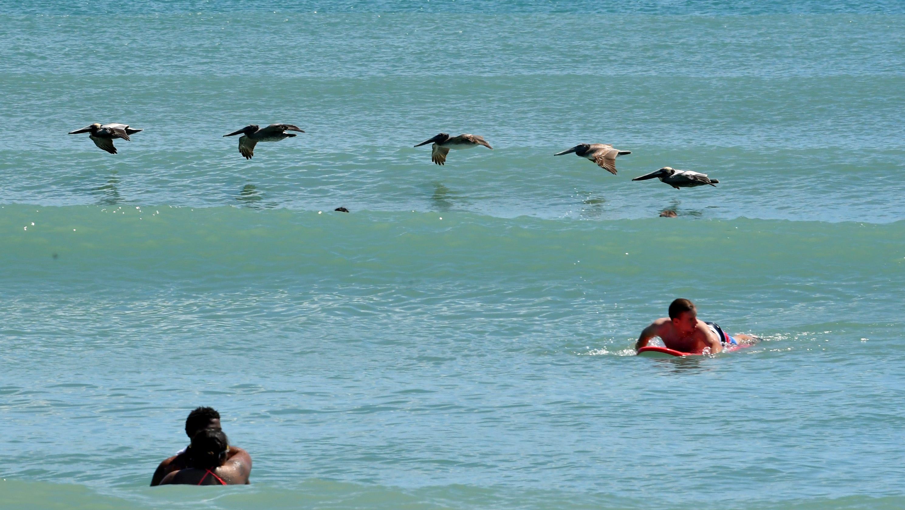 Safe Beaches In Florida