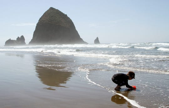 Max Perritt, 3, from Worcester, Mass., gathers seawater in a bucket as Haystack Rock looms in the distance in Cannon Beach, Ore.