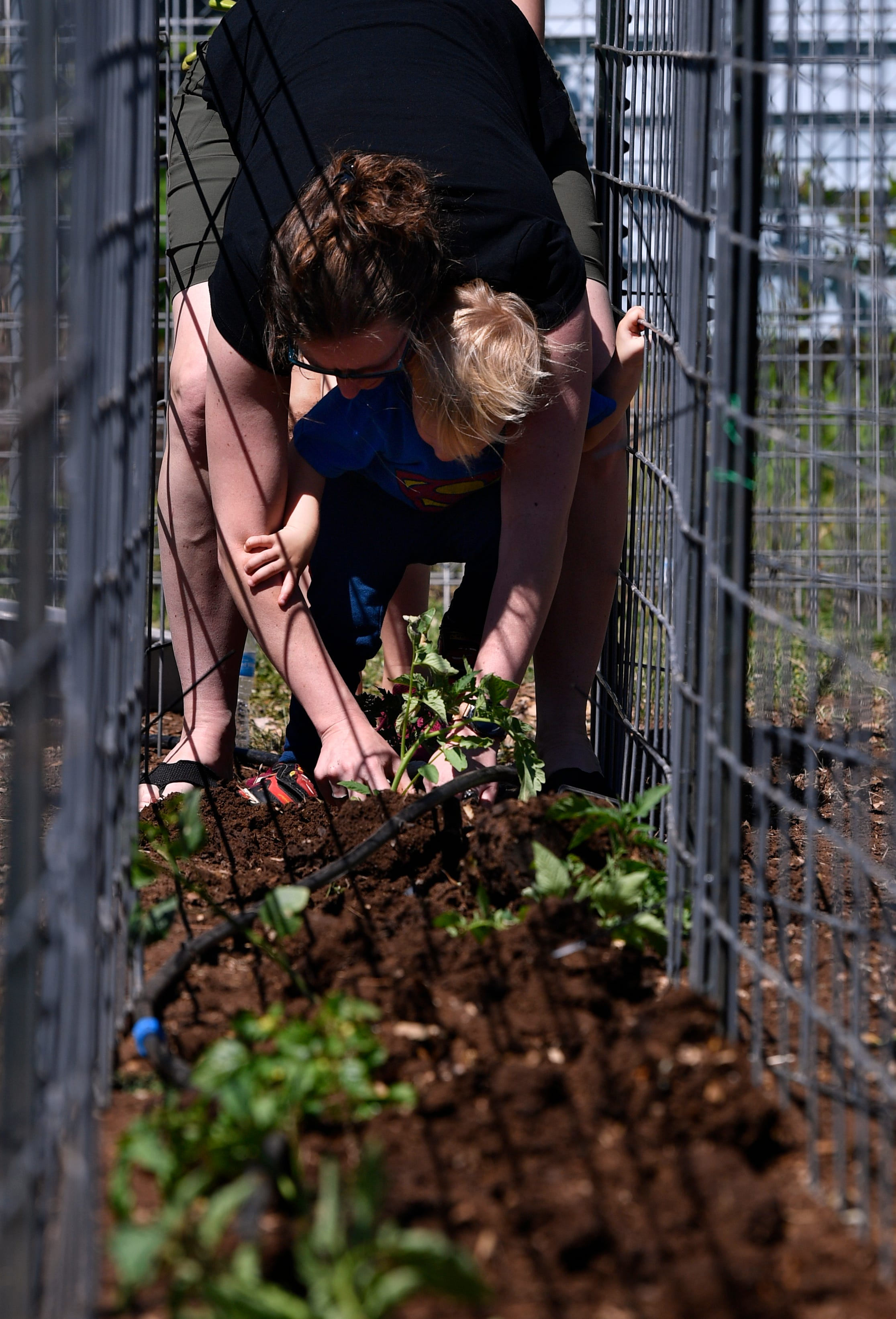 Amy Bush and her 2-year-old son Sterling plant tomatoes at the Open Door Community Garden.