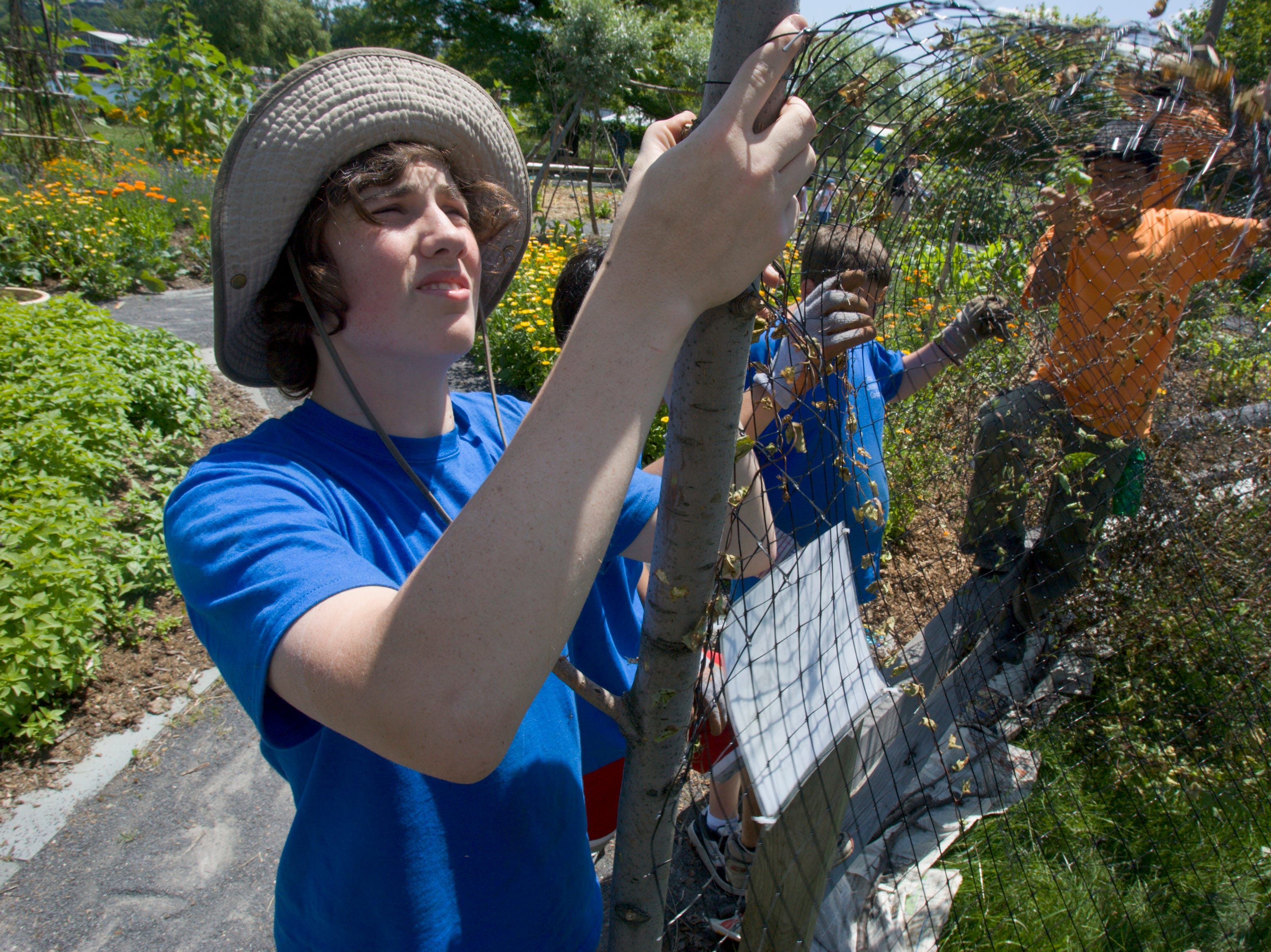 2009: Jared Dugan puts up a deer fence Monday morning at the Ithaca Children's Garden. Dugan is a part of the garden's Youth Horticulture Apprentice Program, where teens get paid to work in the garden four days a week for six weeks.