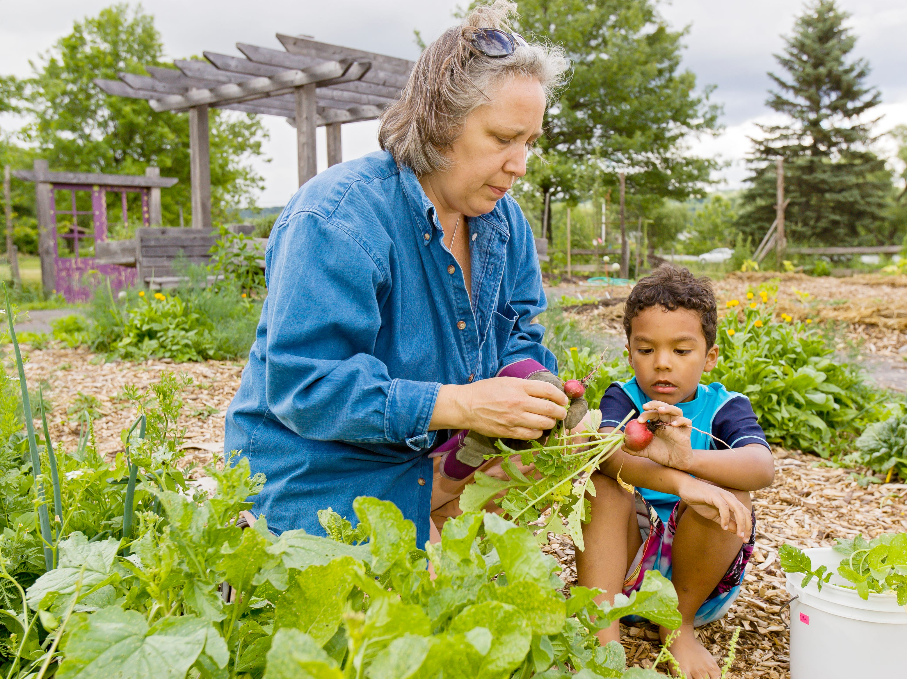 2012: Naomi Raimon and her 5-year-old son Jasper thin out the radishes in the vegetable plot at the Ithaca Childrens' Garden in Cass Park.