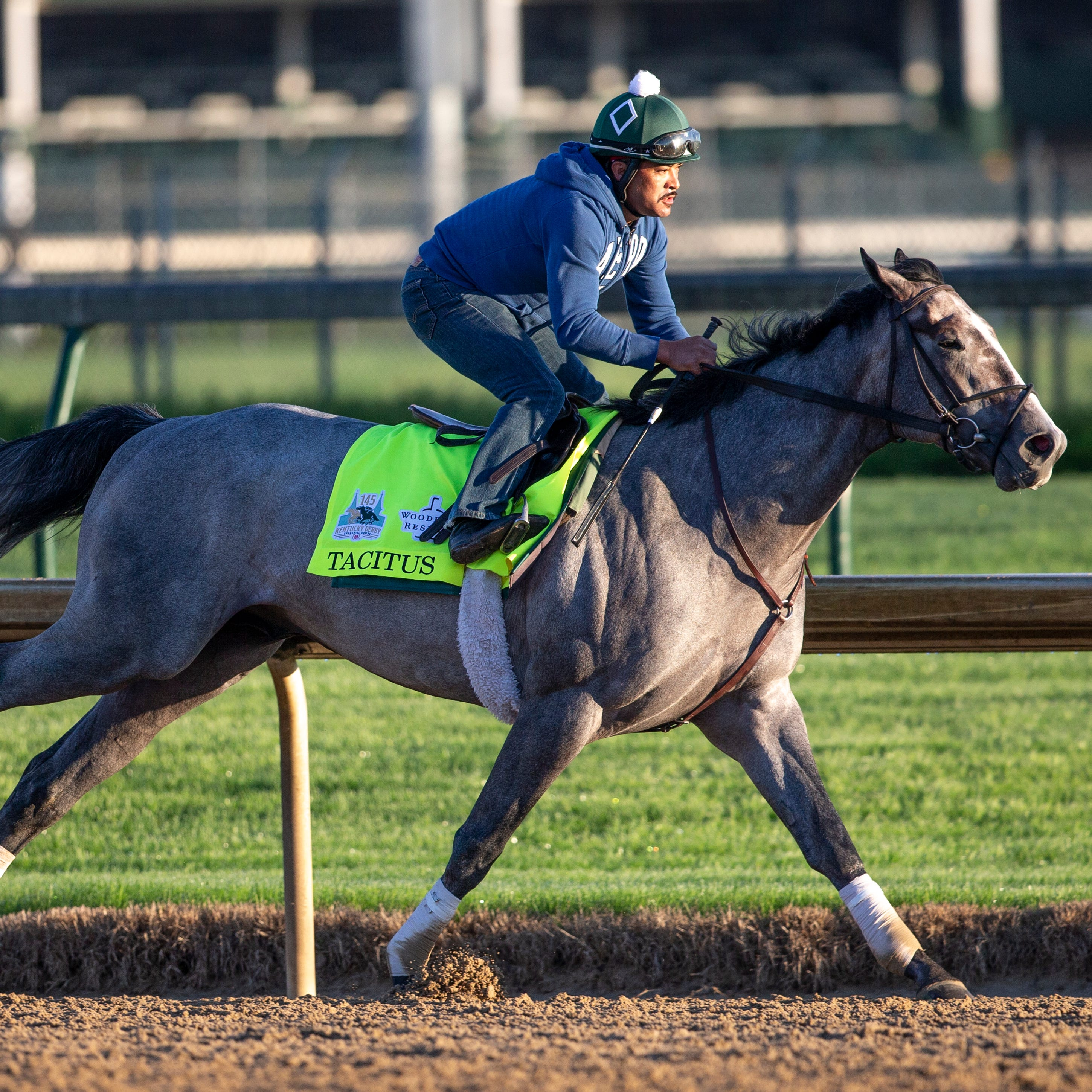 Get to know the 20 horses in the field for the 2019 Kentucky Derby