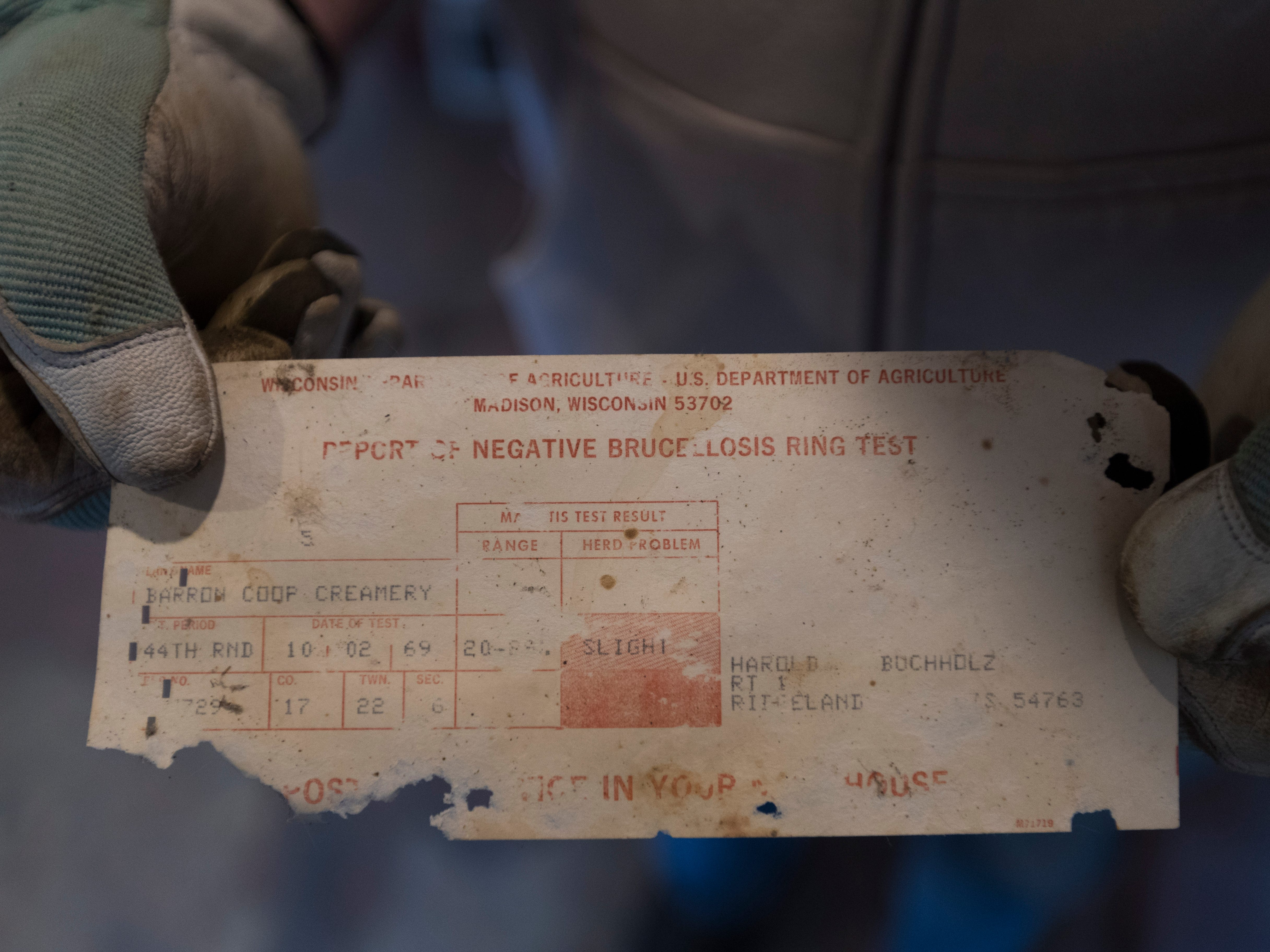 Bruce Drinkman holds a 50-year-old slip for a negative brucellosis test he found at the farm in Ridgeland. Brucellosis attacks the reproductive system of cows and other species of hoofed animals. It also can trigger an infection, undulant fever, in people who have contact with infected animals.