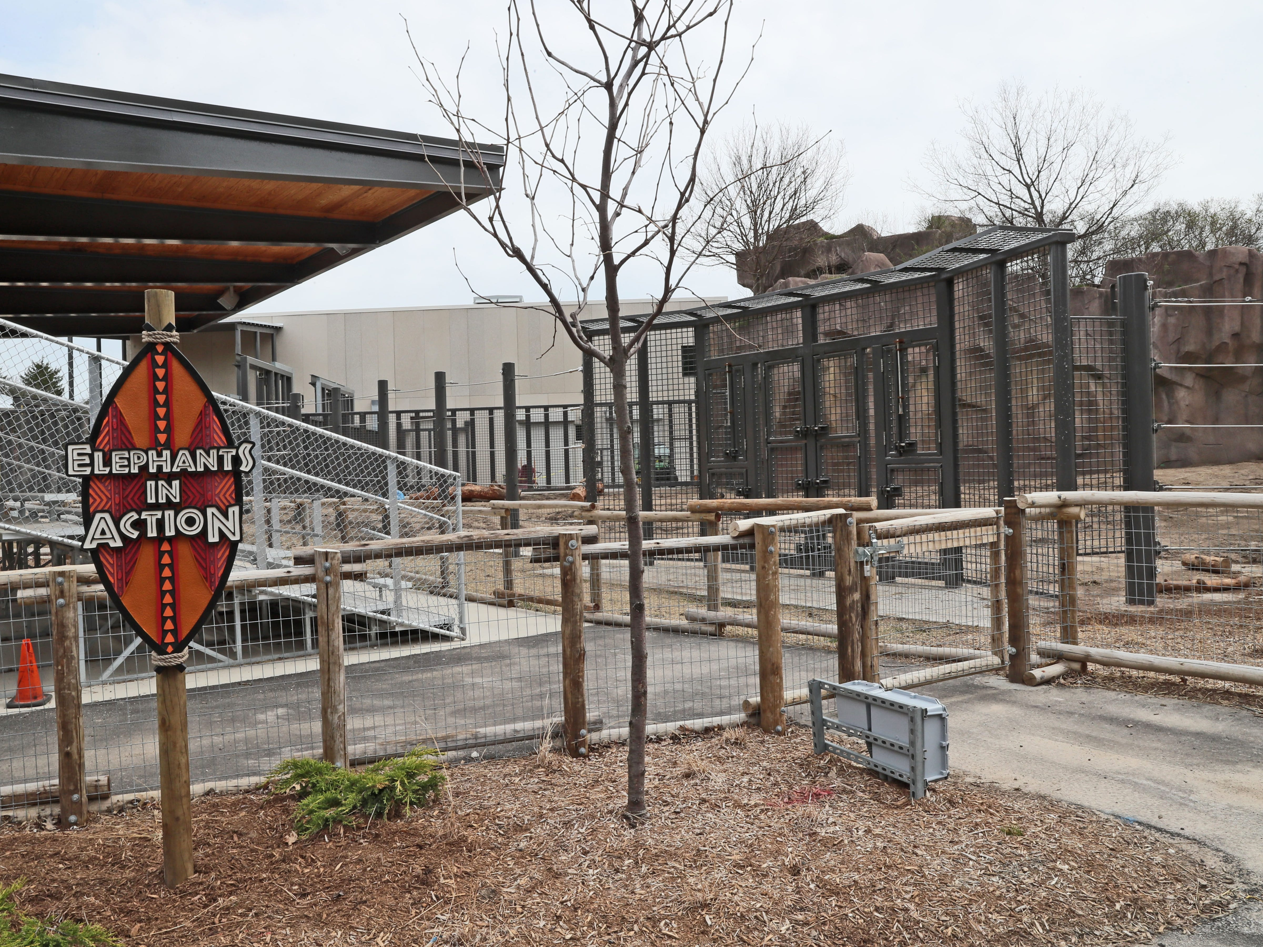 The outdoor demonstration yard in the new elephant exhibit.