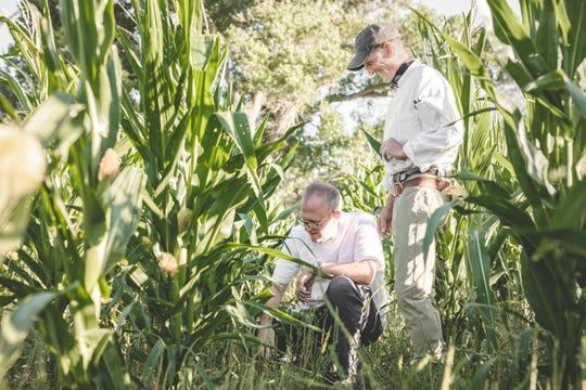 Chef James Porter surveys the field with farmer Jeffrey Herbig at Terra Farm + Manor in Prescott National Forest.