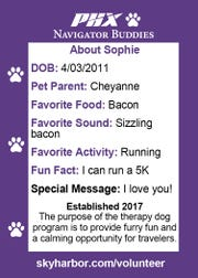Sophie's navigator buddy card explains her favorite things. Sophie is one of 59 therapy dogs that volunteer at Phoenix Sky Harbor International Airport.