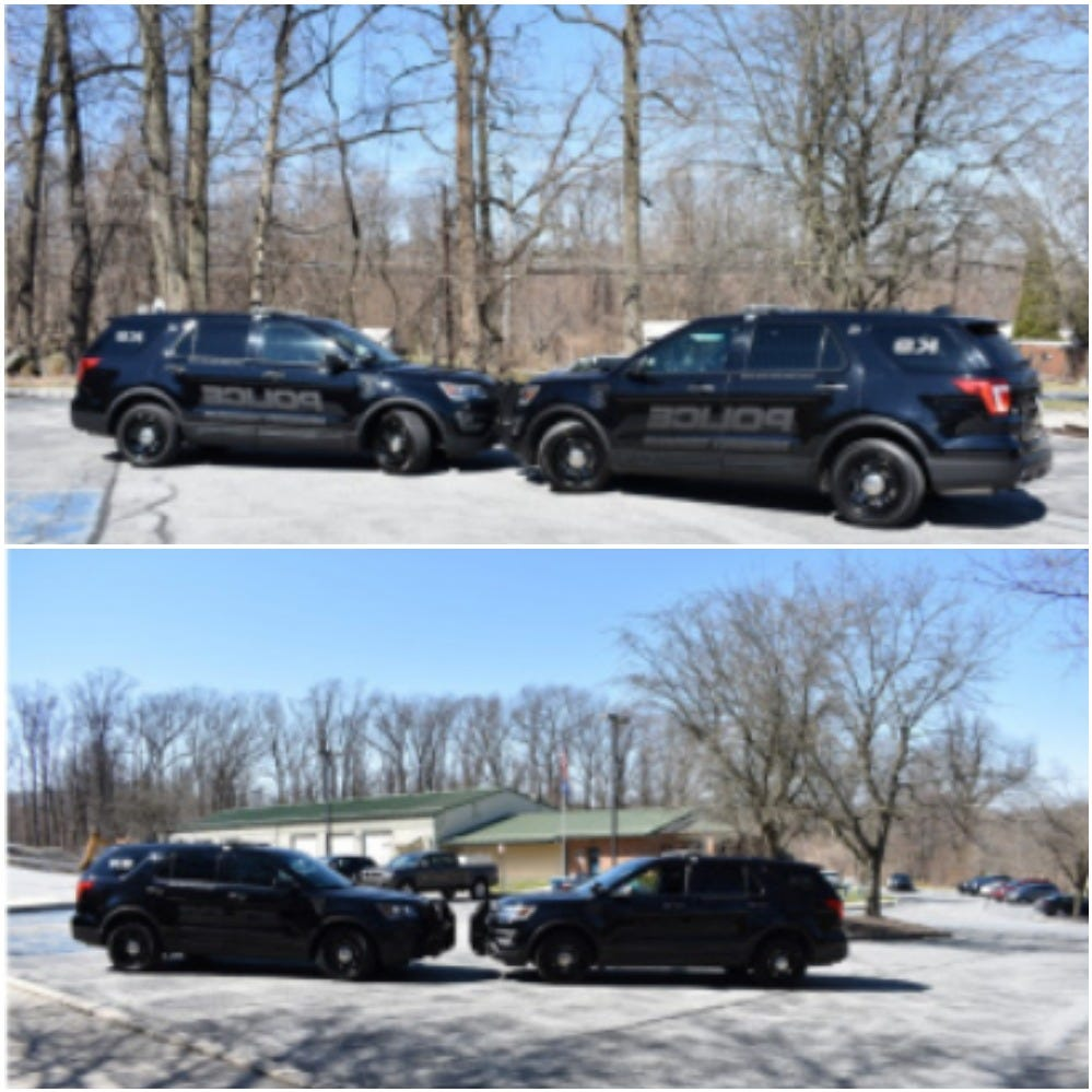 """Newberry Township Police has outfitted its two K-9 vehicles with """"ghost"""" graphics, where the police decals can only be seen in direct sunlight."""
