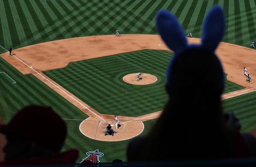 April 21: A fan in bunny ears at the Easter game between the Mariners and Angels in Anaheim watches the action during the seventh inning.
