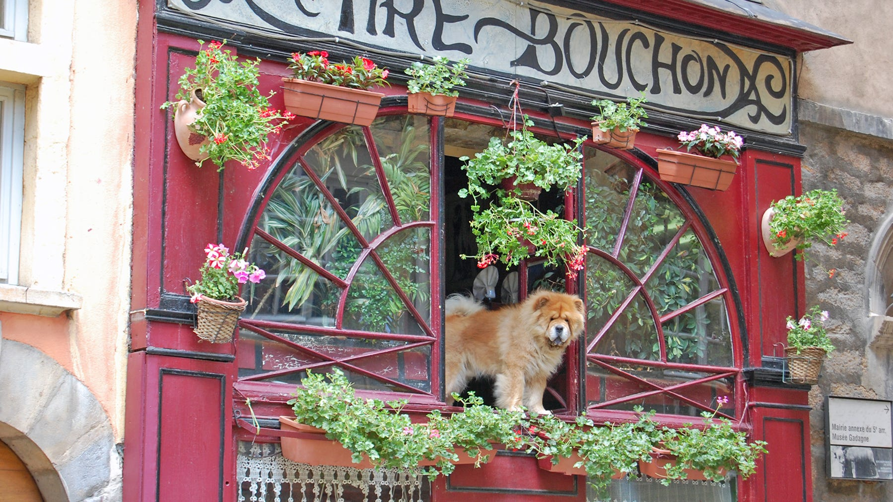 """Try some traditional cuisine in one of Lyon's """"bouchons"""" — simple, cozy bistros filled with character."""