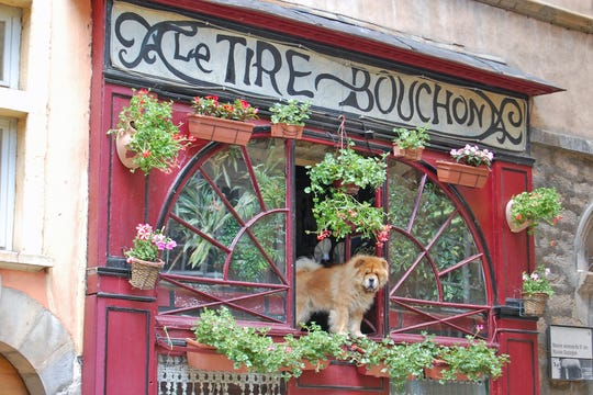 "Try some traditional cuisine in one of Lyon's ""bouchons"" — simple, cozy bistros filled with character."