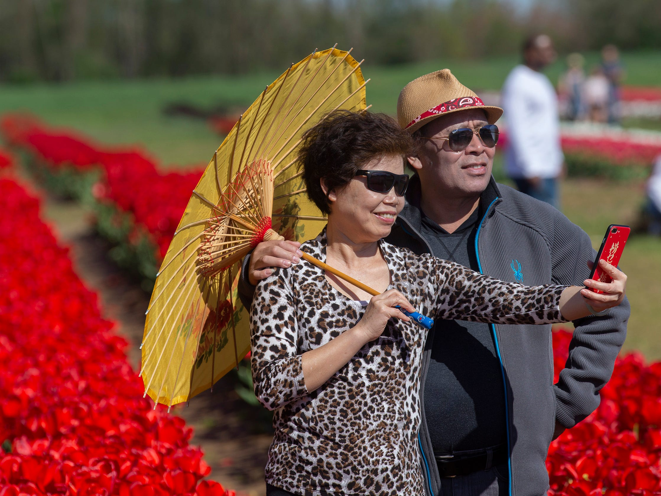 New Yorkers  take photos at the Annual Tulip Festival at Holland Ridge Farms in Cream Ridge Section of Upper Freehold Township. People came from all around to look at the flowers, take pictures of the flowers, and take pictures of themselves with the flowers.