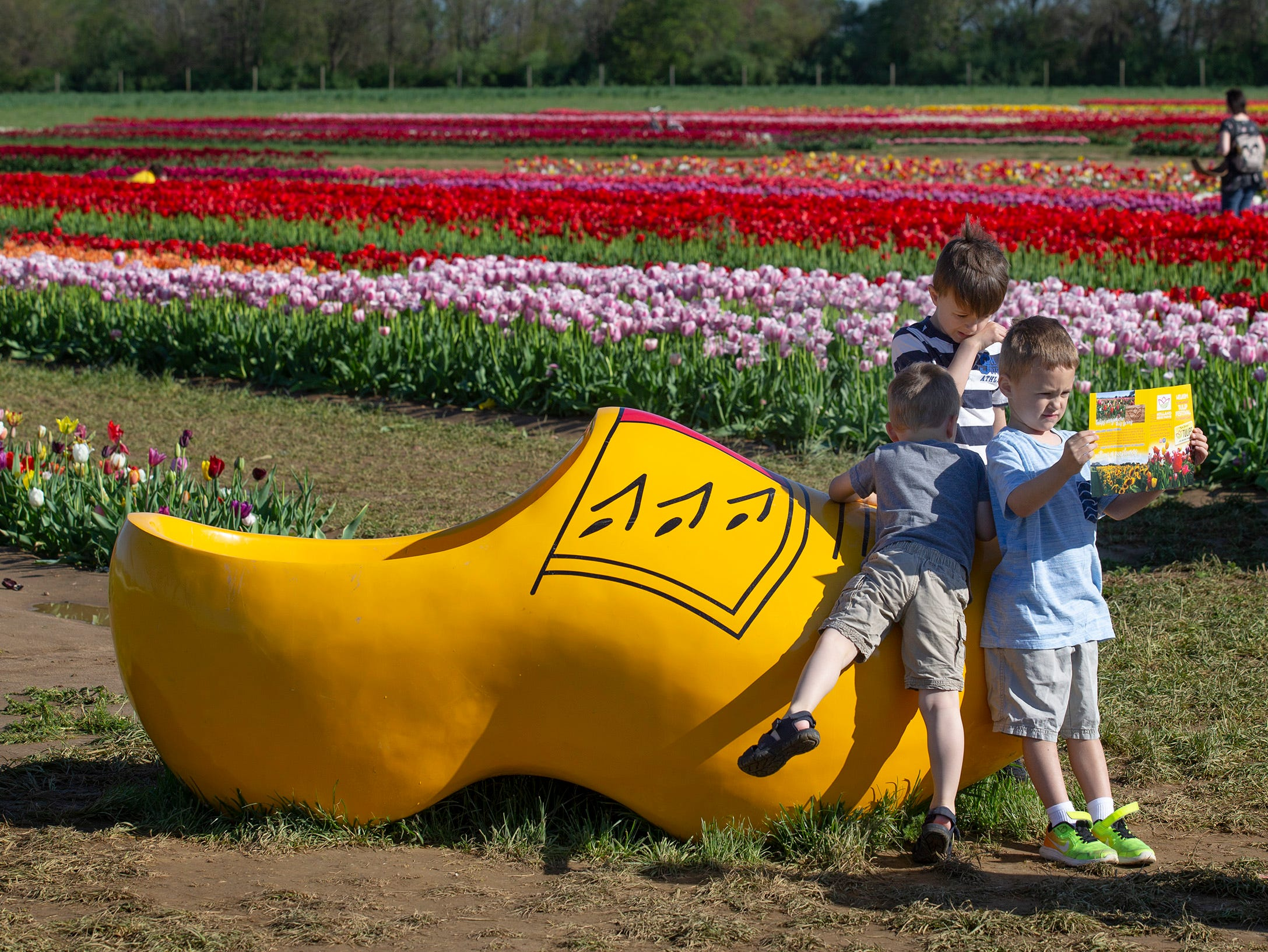 Young boys stand near large wooden shoe at the annual Tulip Festival at Holland Ridge Farms in Cream Ridge Section of Upper Freehold Township. People came from all around to look at the flowers, take pictures of the flowers, and take pictures of themselves with the flowers.