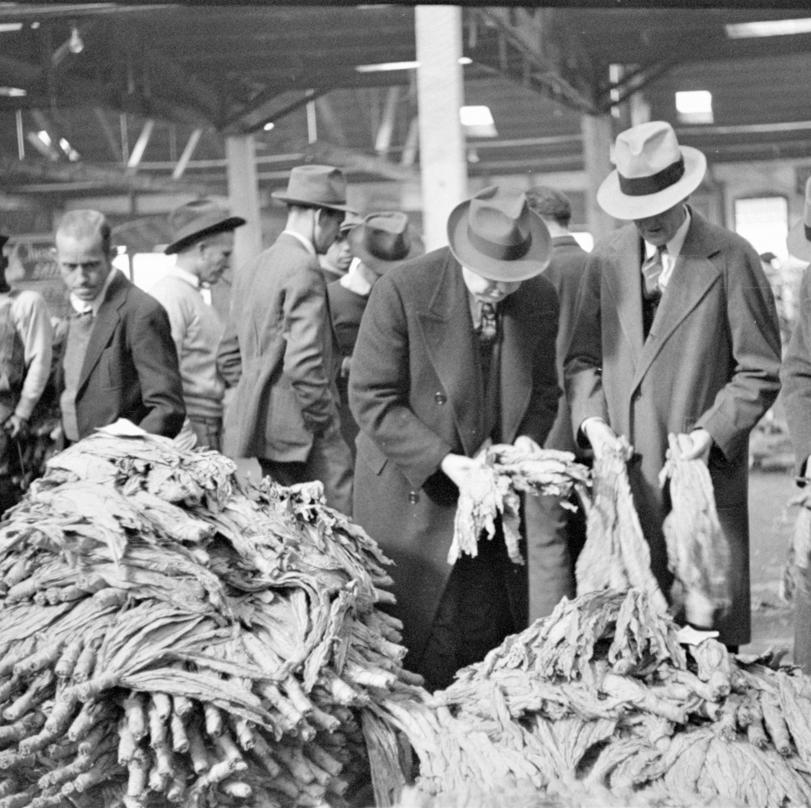 Visiting Our Past: Brightleaf tobacco intoxication the 1880s