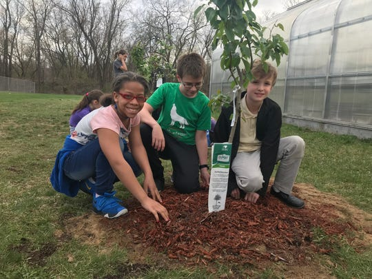 Morgan Jackson, 10, Josh Ryckman,11, and Mitchell Cooper, 10, planted fruit trees at Battle Creek Montessori Academy on Monday. The trees that were initially going to be planted were stolen, but the community donated new trees so the students could plant them to celebrate Earth Day.