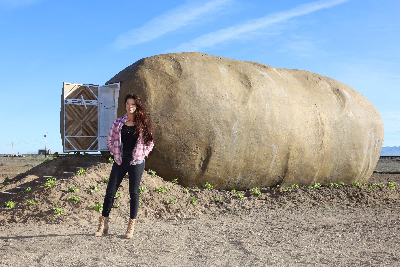 Potato hotel, world's tallest filing cabinet, Beautiful