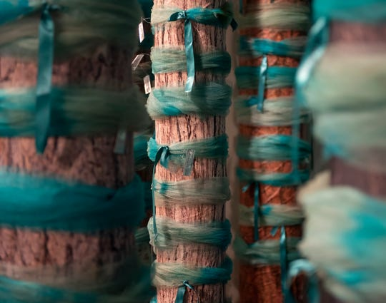 "An installation of re-created trees adorned with teal ribbons in ""Finding Our Voice: Sister Survivors Speak"" at the Michigan State University Museum. The tulle ribbons were originally tied to trees around campus in support of survivors of Larry Nassar."