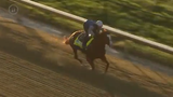 Improbable, a horse running in the 2019 Kentucky Derby, took some time Monday to run on the Churchill Downs dirt. April 22, 2019