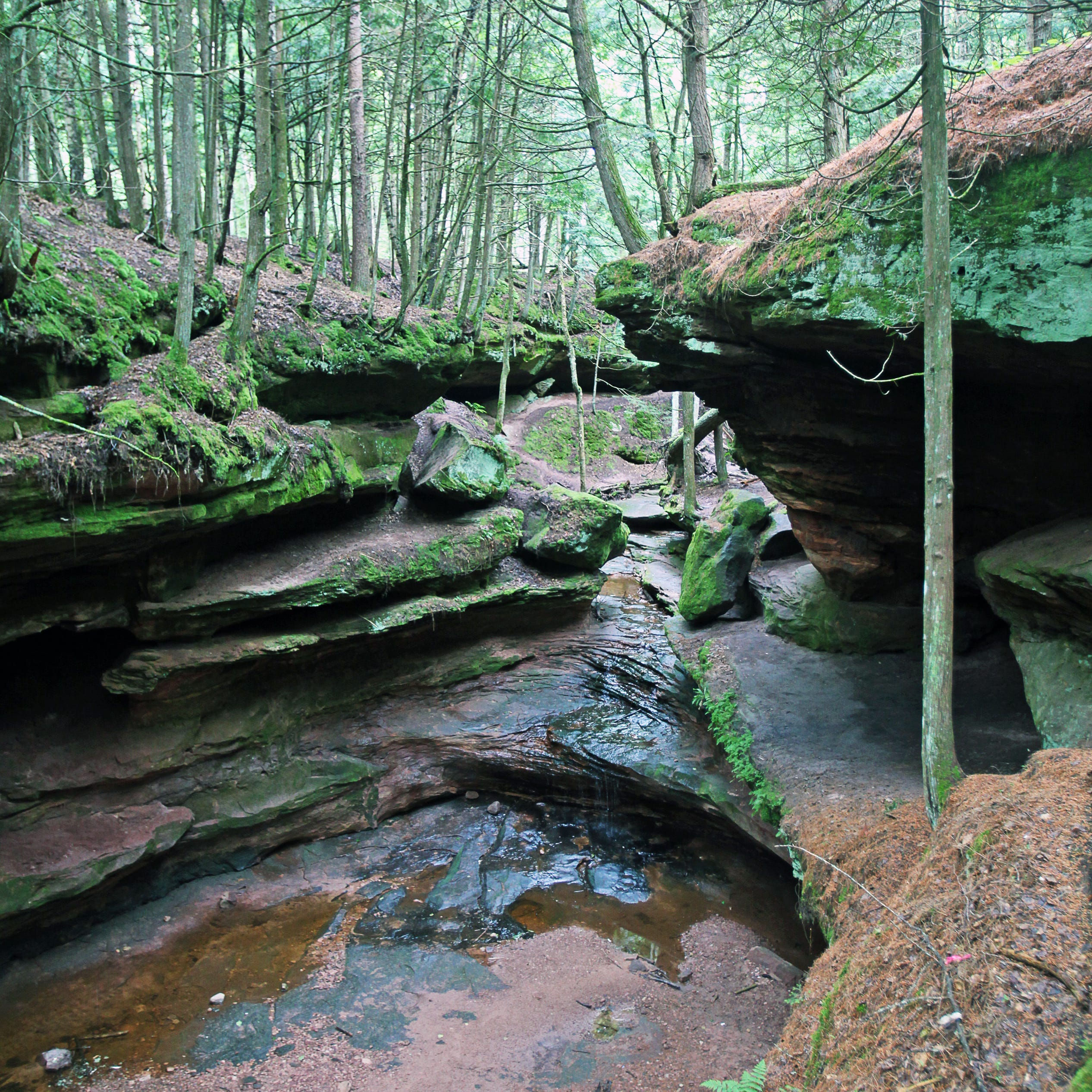Spring is the best time to visit Houghton Falls in a scenic gorge on the Bayfield peninsula