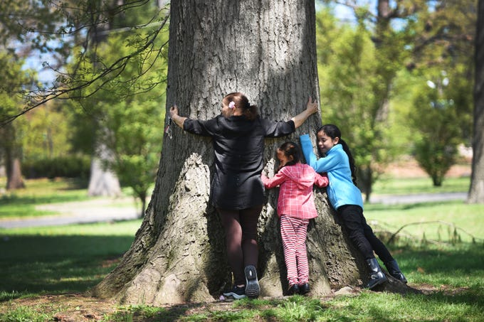 Gislea (no last name given) of Paterson, together with her two granddaughters Solimar (C, age 7) and Kailan (R, age 9) hug a tree in order to receive energy from it as they visit at Eastside Park in Paterson on 04/23/19.