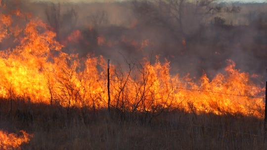 A  fire scorches land in New Mexico.