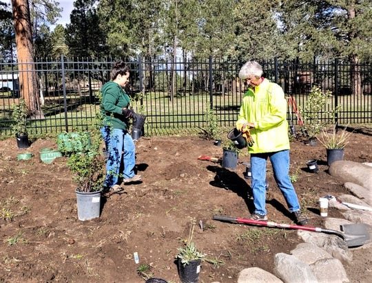 Keep Ruidoso Beautiful Chairman Reyna Flores, left, and Ruidoso Councilor Susan Lutterman place plants in the new botanical garden to be dedicated after the cleanup.