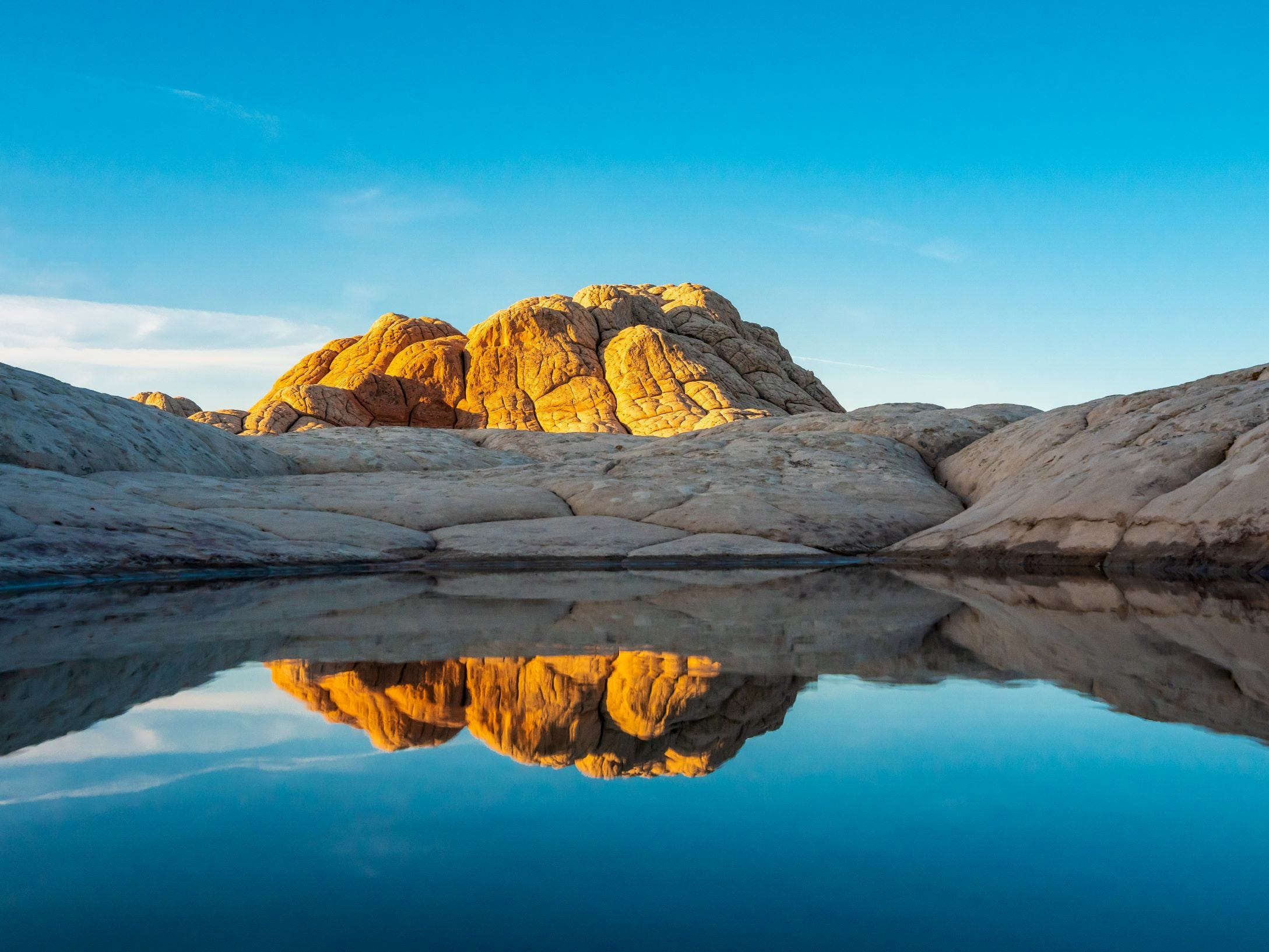 A rocky dome is reflected in the water at White Pocket.