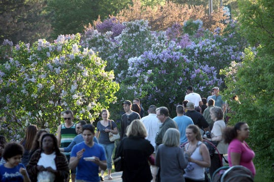 This year's Rochester Lilac Festival runs from Friday, May 10, through Sunday, May 19, in Highland Park.