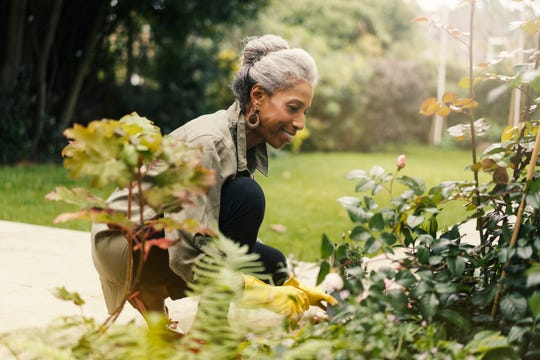 Experts find seniors get multiple benefits from gardening.