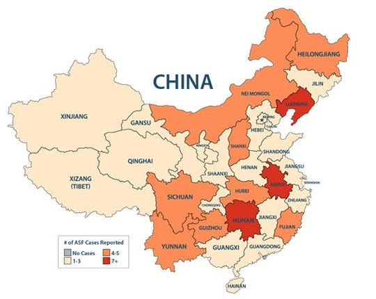 With the official report coming late last week that the island province of Hainan was positive for African swine fever (ASF), China is now essentially ASF-positive in its entirety.