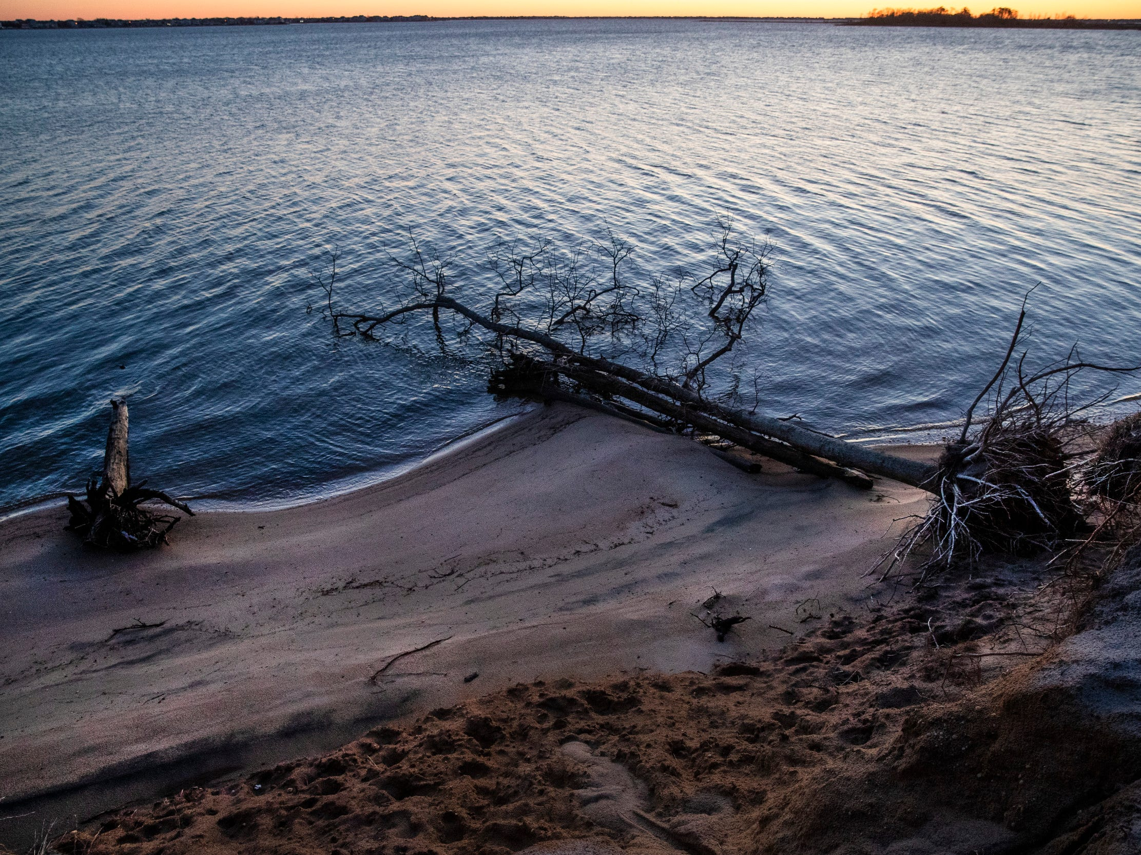 Cattus Island County Park is a 530 acres passive recreation park in Toms River that provides views of the Barnegat Bay and an impressive selection of bird and wildlife. Peter Ackerman