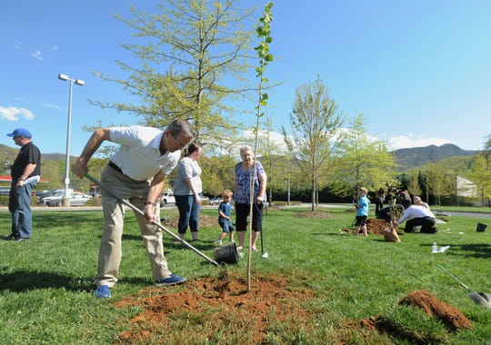 Former Buffalo Bills safety and current vice president of client development for BAM (Brand Activation Maximizer) puts the finishing touches on a tree planted outside of the Black Mountain Ingles on April 23.