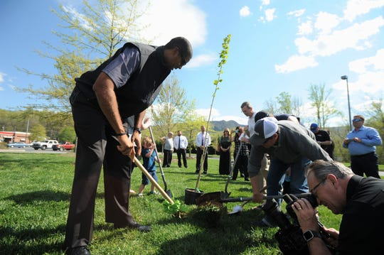 Brad Daugherty breaks ground to plant a tree at Ingles in Black Mountain on April 23, in a ceremony to announce a partnership between the supermarket, Kimberly-Clark Corporation and One Tree Planted. The project will replace trees removed from the campus of Black Mountain Primary School earlier this year and plant 5,000 trees in the southeast this year.