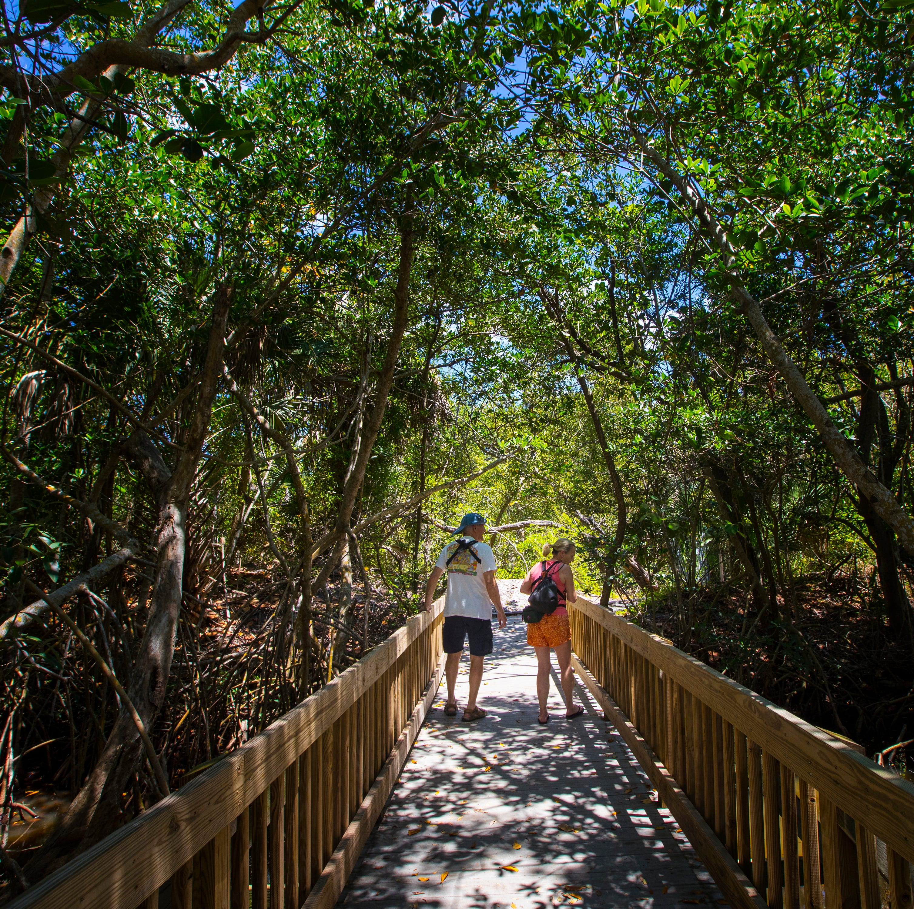 Matanzas Pass Preserve, Fort Myers Beach's 'hidden gem' gets $1.1 million in improvements