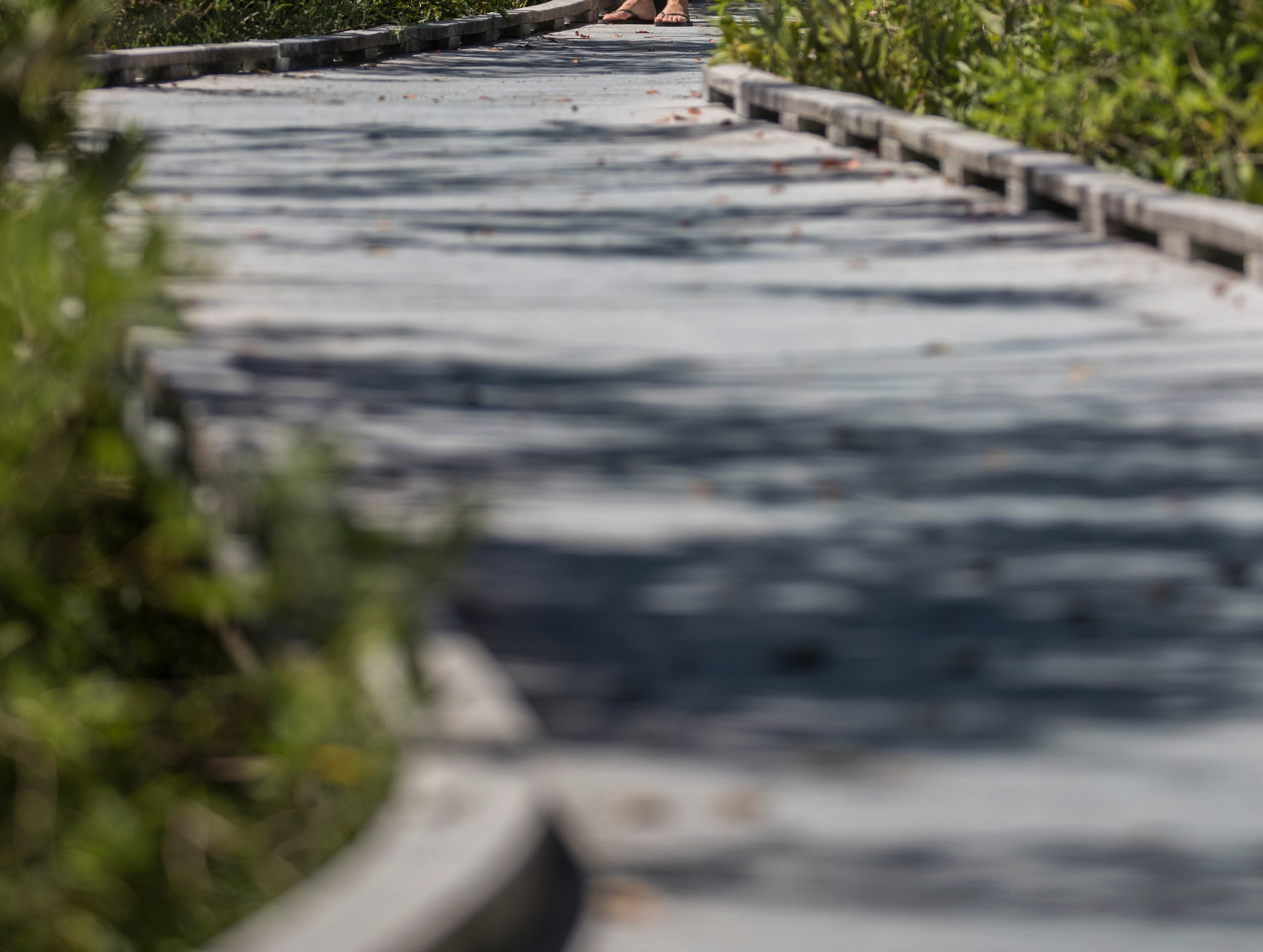 Tourists pause to snap a photo while visiting the Matanzas Pass Preserve boardwalk trail Tuesday afternoon, April23, 2019. The preserve is scheduled to undergo new upgrades.
