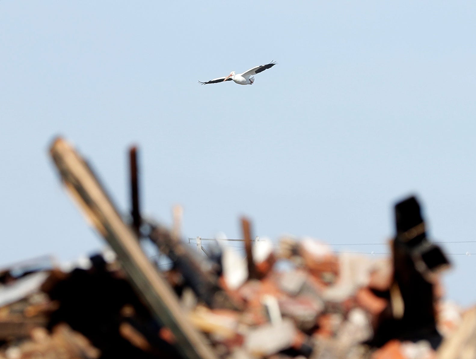 A pelican flies behind the debris of 100 S. Broadway in De Pere on April 24, 2019, after the building burned down overnight. The building was home to Ogan Restaurant, apartments and a number of other businesses.