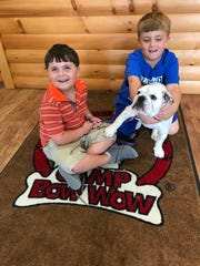 Griffin McNeil of Brandon, left, and his brother, Austin McNeil, play with their English Bulldog, Sophie, while picking her up from daycare at Camp Bow Wow.