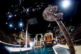 Take a sneak peek inside Dolly Parton's new Pirates Voyage dinner show in Pigeon Forge.