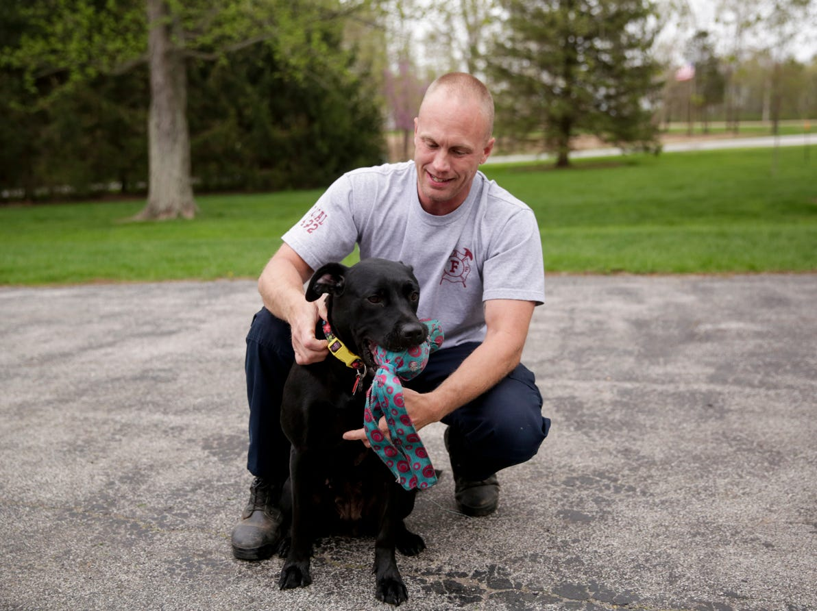 Travis Oliver, a sergeant with the Lafayette Fire Department, plays with his dog, Lexi, Wednesday, April 24, 2019, at his West Lafayette home. Lexi was injured in a Minnesota house fire when her crate melted to her skin causing burns on the left side of her body. Oliver saw Lexi on a rescue organization's Instagram account and knew he had to adopt her.