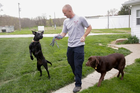 Travis Oliver, a sergeant with the Lafayette Fire Department, plays with his dogs, Lexi, left, and Odin, right, Wednesday, April 24, 2019, at his West Lafayette home. Lexi was injured in a Minnesota house fire when her crate melted to her skin causing burns on the left side of her body. Oliver saw Lexi on a rescue organization's Instagram account and knew he had to adopt her.