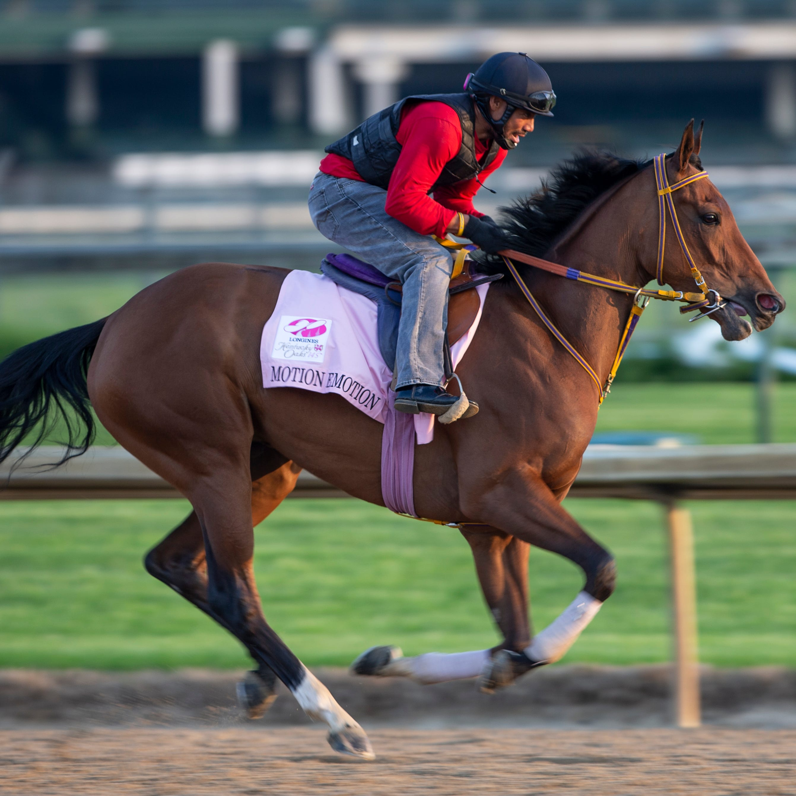 Check out the Kentucky Oaks 2019 post position draw, jockeys, odds