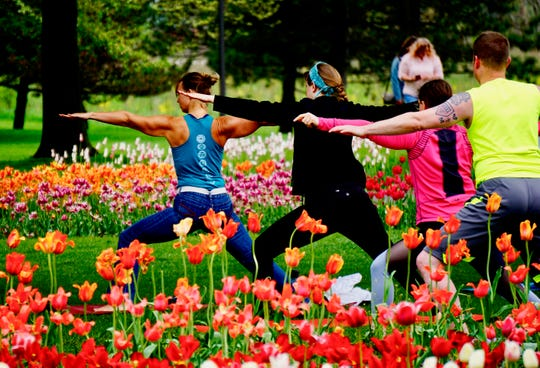Try Yoga in the Tulips at Tulip Time Festival in Holland, Michigan, where millions of tulips blossom in spring.