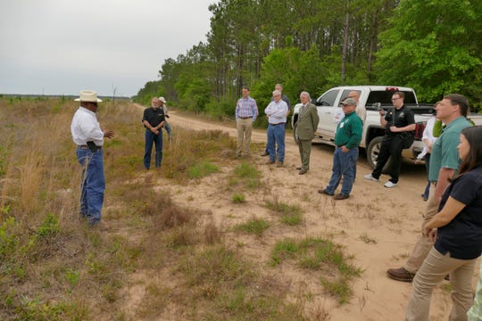 Russell Morgan, state conservationist with the Natural Resources Conservation Service, talks to a group Wednesday as it tours Santa Rosa County forest property.