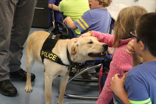 K-9 Kalahan, the newest officer at the Danbury Township Police Department, loved getting to meet with local students at Danbury Local Schools.